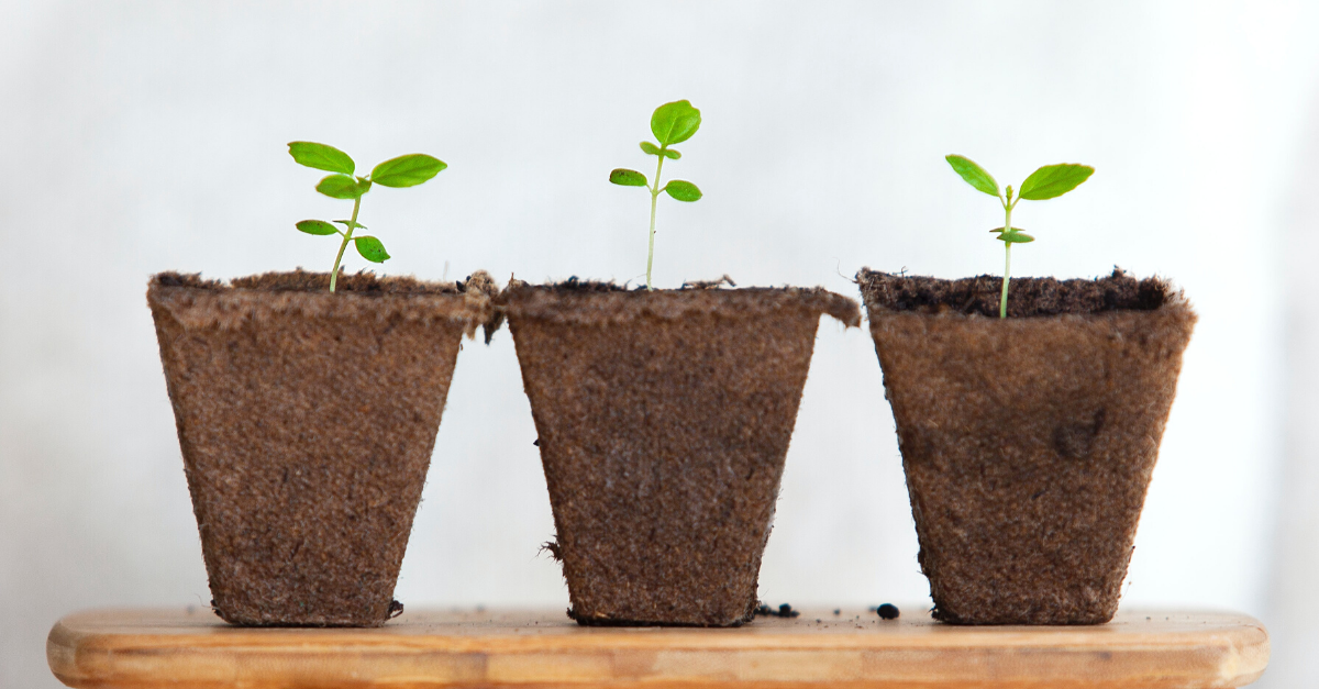 Need vs Nurture: the critical role Demand Generation has to play